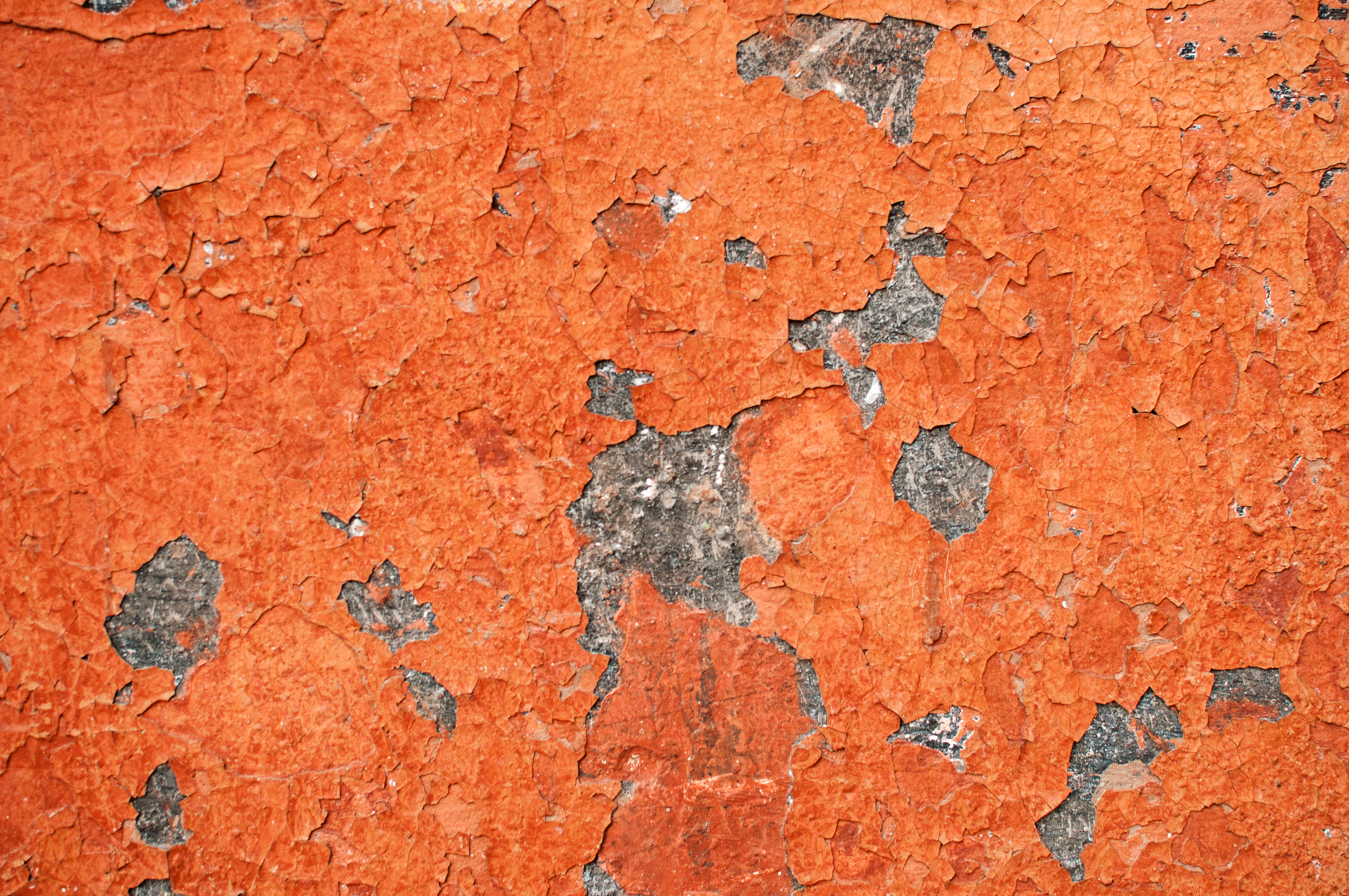 Exposed To Lead In Your Al Contact Our Poisoning Attorneys Paint Removal Cost With